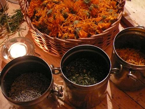 herbal photo
