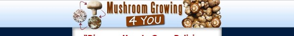 Get Mushroom Growing 4 You