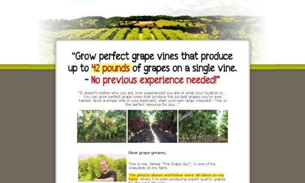 The Complete Grape Growing System Review - Does it Really Work?